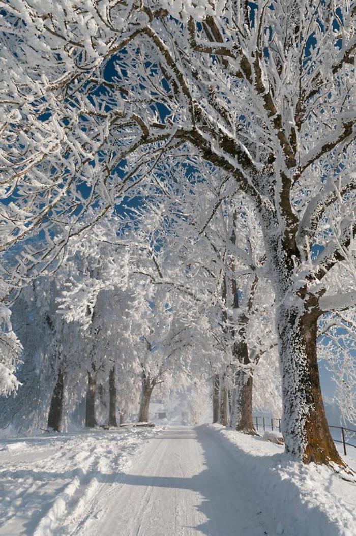 éclatant-fond-d-ecran-hiver-paysages-de-noel-éclatant-beauté