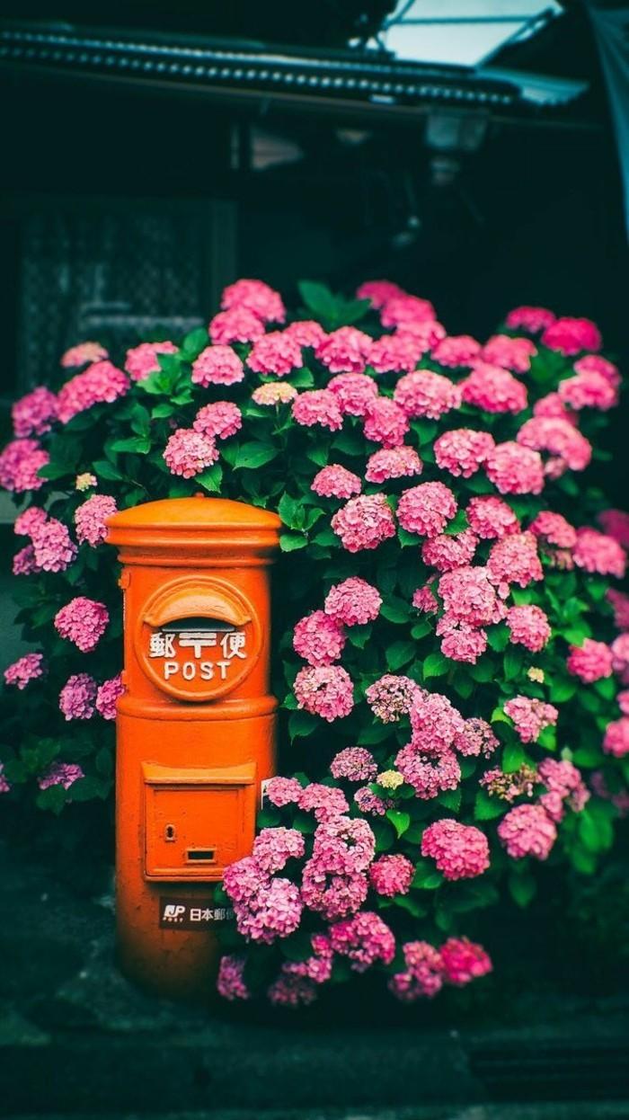 étiquette-boite-aux-lettres-chinoise-boite-aux-lettres-normalisée-bell-photo