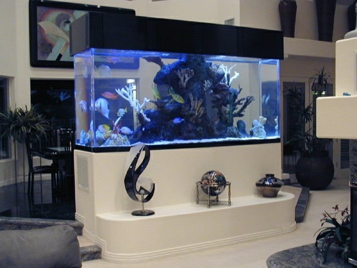 L aquarium mural en 41 images inspirantes - Objet de decoration pour salon ...