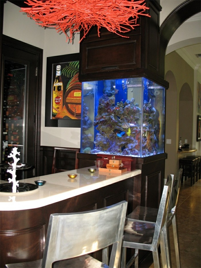 Meilleur Decoration Interieur Aquarium