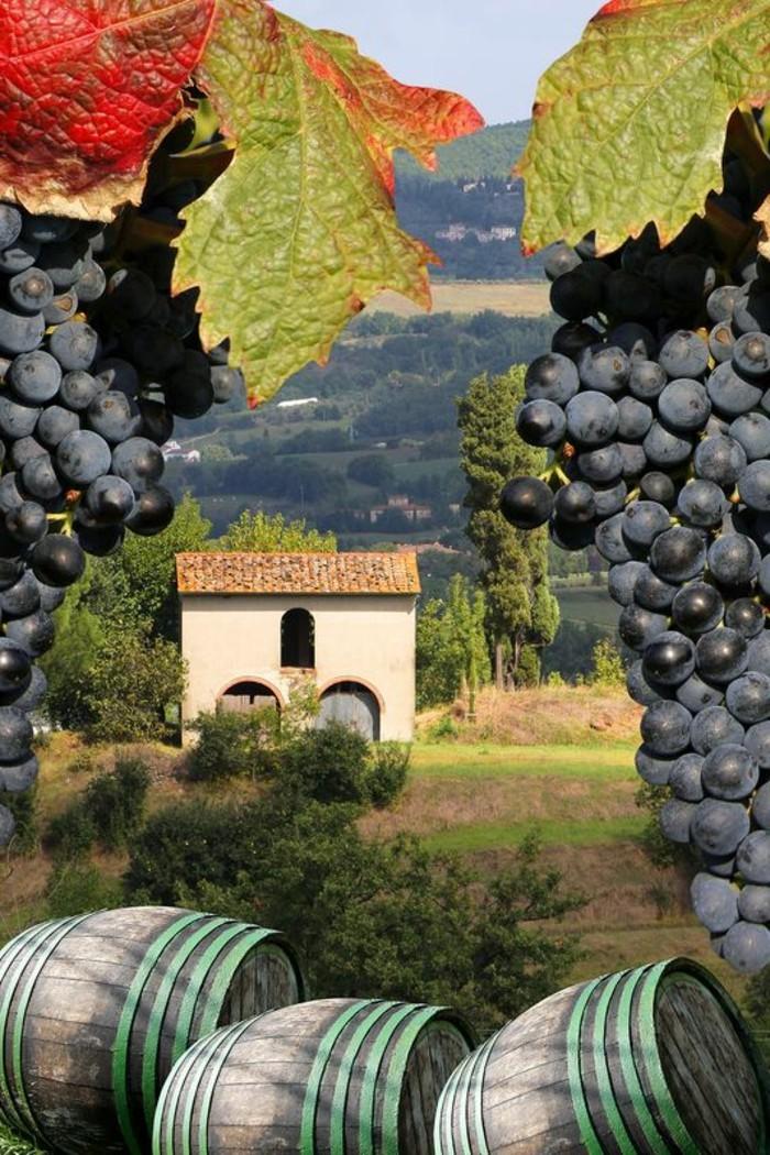 1-séjour-en-toscane-italie-les-plus-belles-villes-d-italie-maison-italienne-villa-toscane