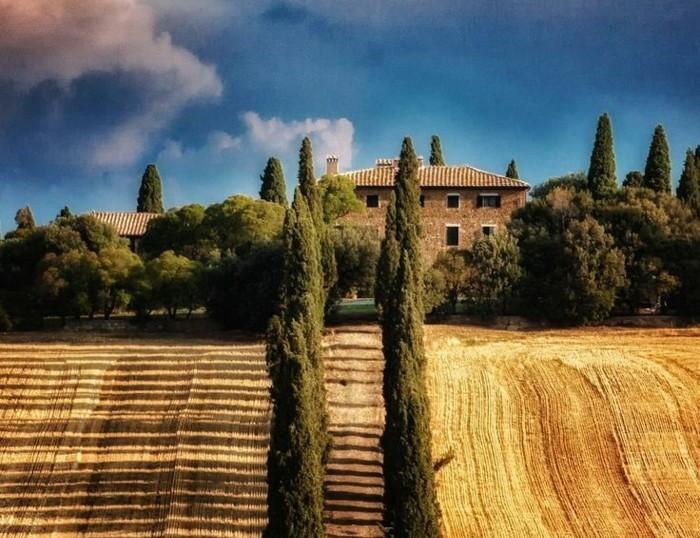 1-séjour-en-toscane-visiter-la-toscane-les-champs-de-blés-les-plus-beaux-champs