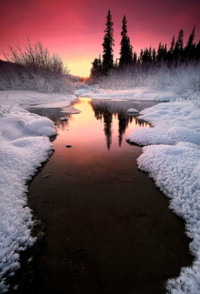 Chouette-paysage-de-neige-le-paysage-d-hiver-image-de-paysage-beauté