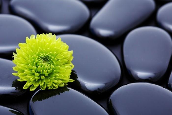 Fleurs-galets-décoratifs-pour-la-maison-idées