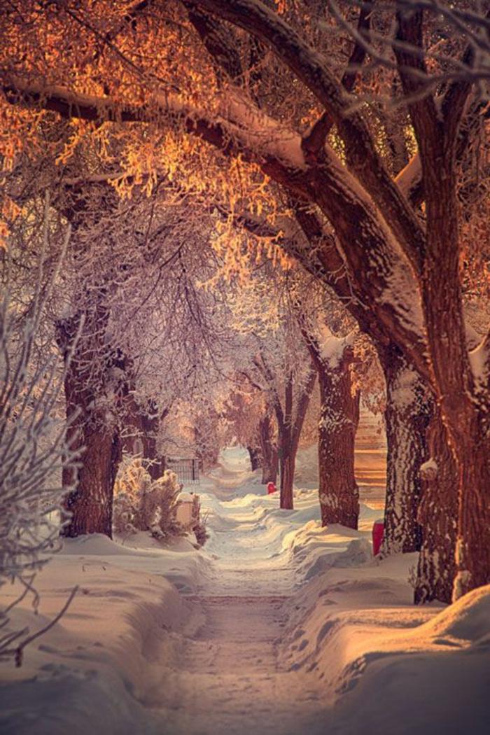 Le paysage d 39 hiver en 80 images magnifiques for Fond ecran gratuit pour ordinateur hiver
