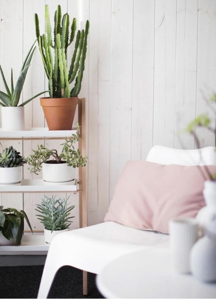 Plante-verte-dépolluantes-d'intérieur-plantes-vertes