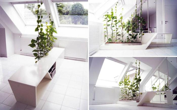 Plante-verte-d'intérieur-plantes-vertes-d'intérieur-dépolluante