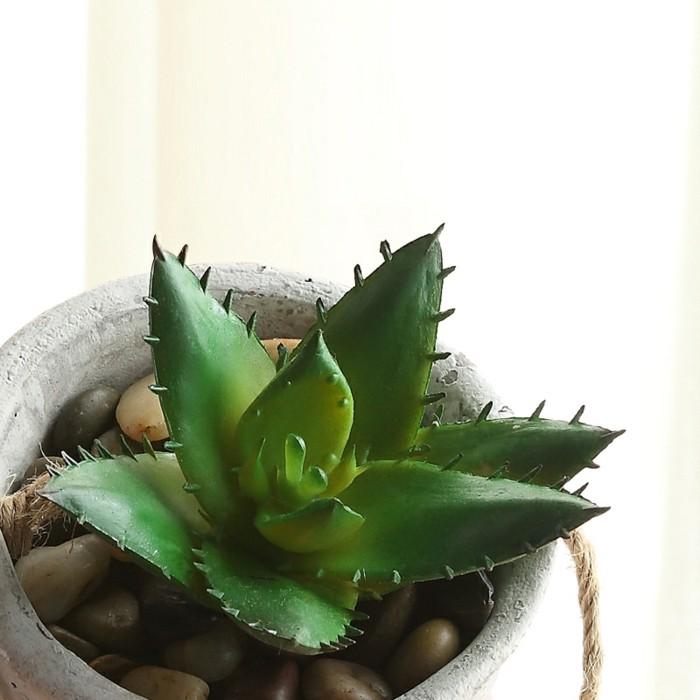 Plantes-vertes-dépolluante-d'intérieur-dépolluantes-plante-verte