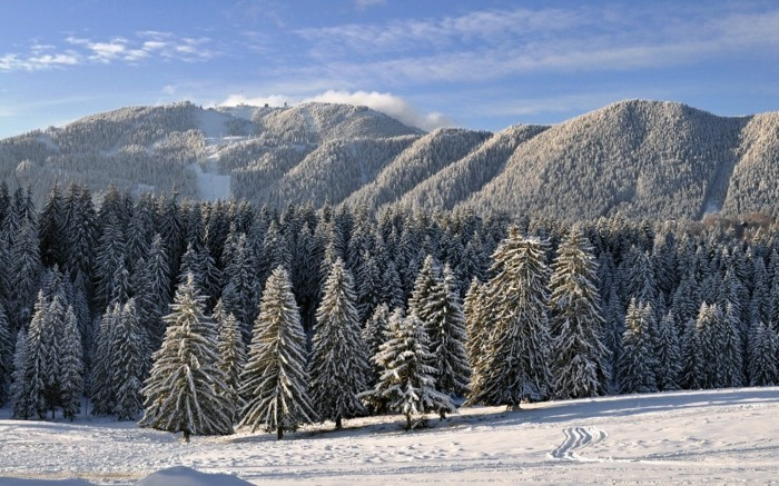 Ski-Resort-in-Romania-6-ski-séjour-snowboard-vacances-ressorts-pas-cher