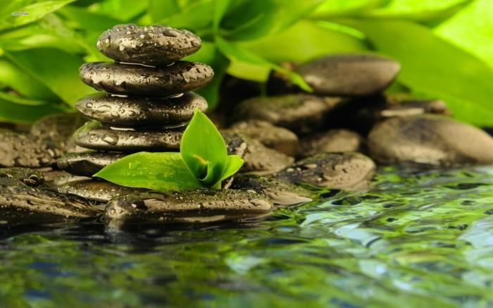 Zen-jardin-galets-décoratifs-pour-le-jardin