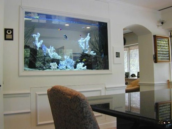 aquarium-complet-pas-cher-pour-le-salon