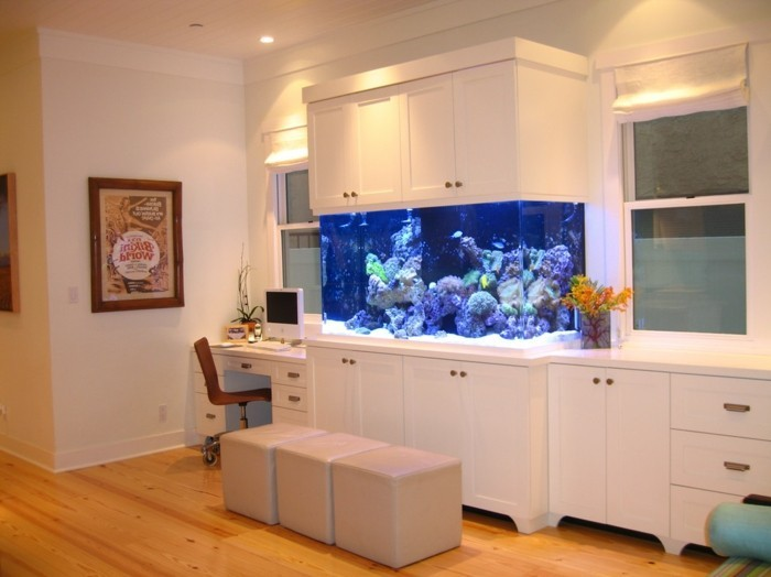 endroits propices aquarium accueil design et mobilier. Black Bedroom Furniture Sets. Home Design Ideas