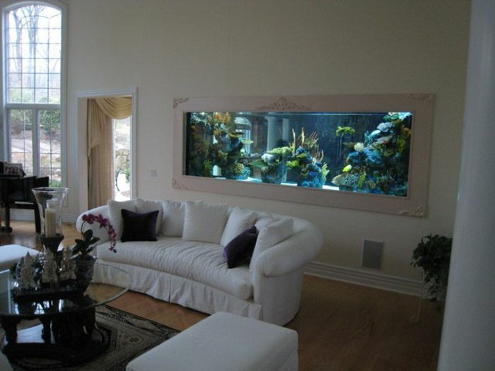Aquarium complet pas cher 28 images aquarium complet for Acheter salon complet