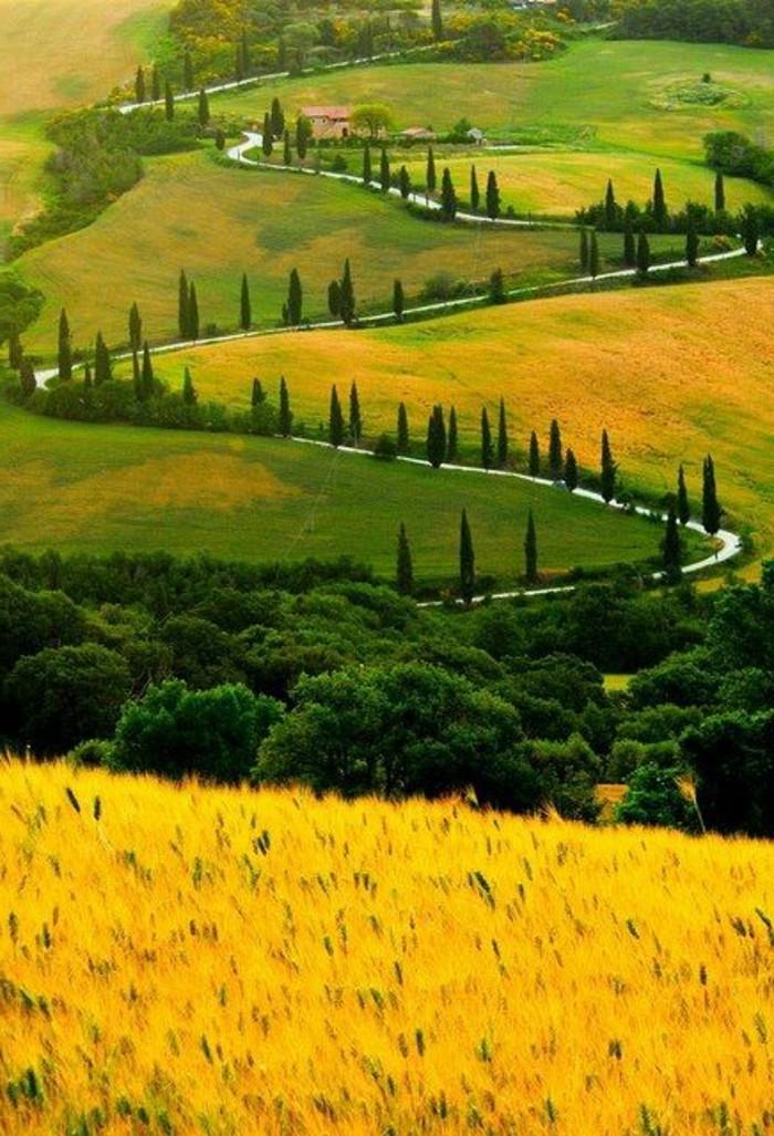 champs-de-blé-en-toscane-séjour-en-toscane-visiter-la-toscane-photos