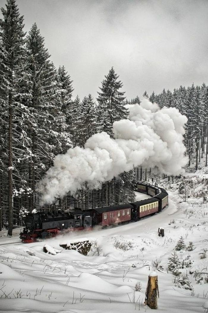 chouette-canada-paysage-fond-ecran-neige-fond-d-écran-d-hiver-train-paysage-d-hiver