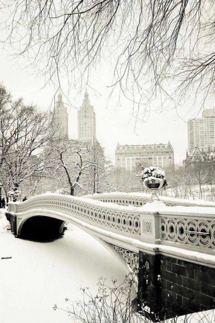 fond-d-écran-montagne-photos-de-montagne-brillant-beauté-de-new-york-central-park