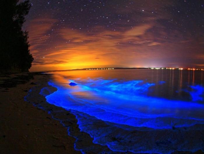 image-au-coucher-de-soleil-plankton-sejours-maldives-vacances-aux-maldives-ile-maldives-eau-illuminé