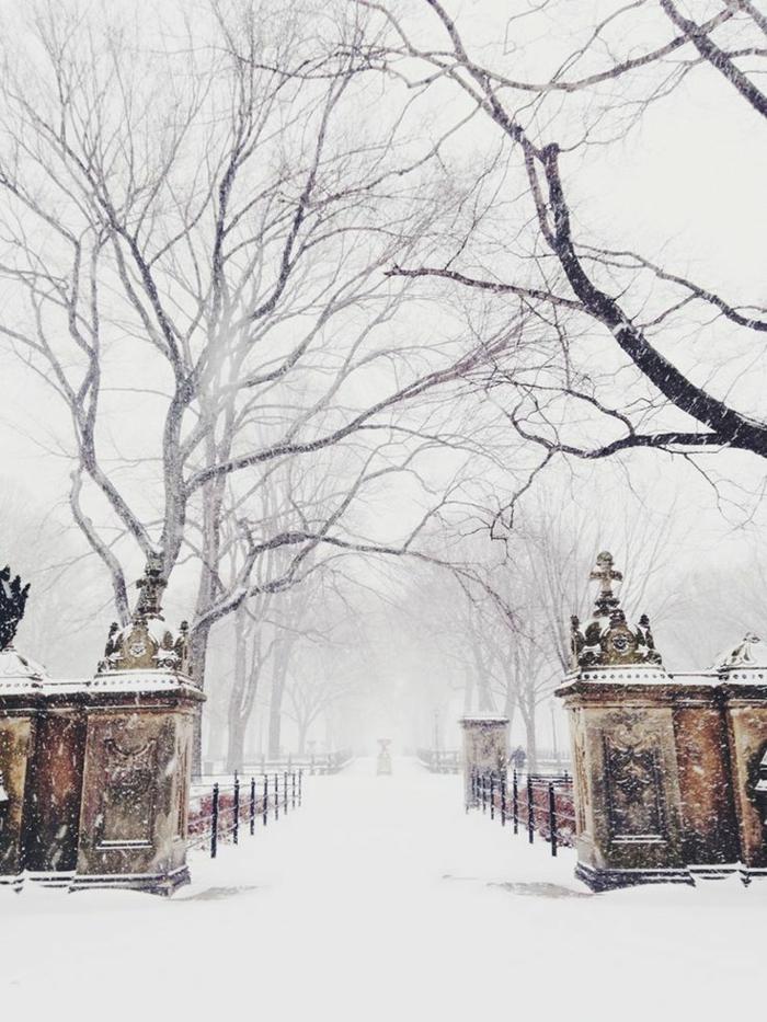 image-incroyable-photo-paysage-magnifique-fond-d-écran-paysage-d-hiver