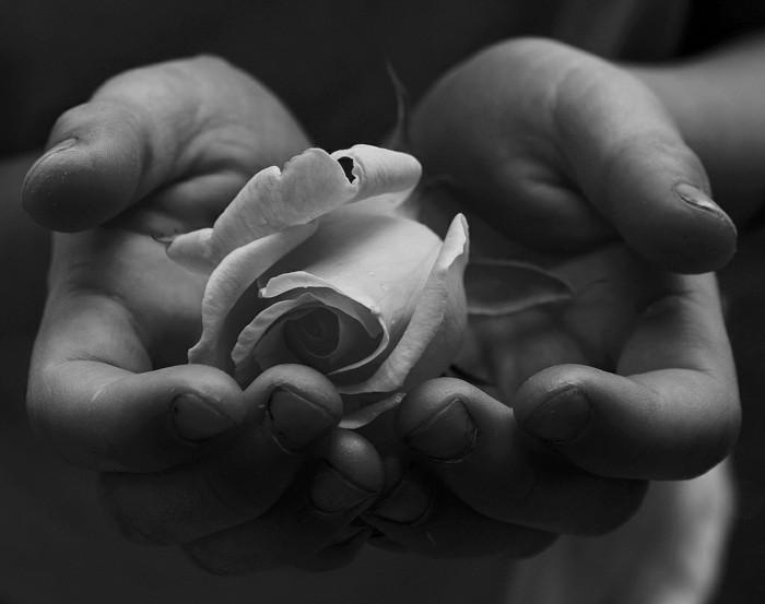 Fabuleux La photo artistique noir et blanc - choisir la meilleure de notre  BH82