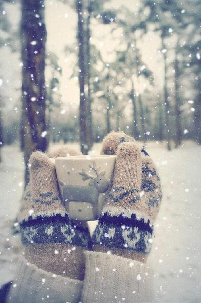 incroyable-photo-paysage-magnifique-fond-d-écran-paysage-d-hiver