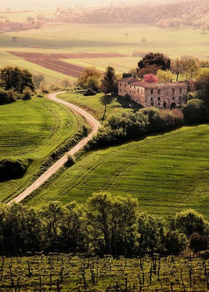 joli-paysage-de-toscane-séjour-en-toscane-les-champs-verts-de-toscane