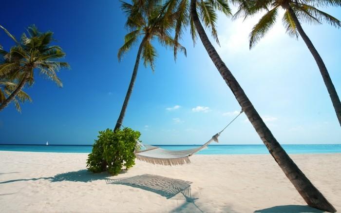 les-maldives-voyage-carte-des-maldives-routard-vie-chouette-amour