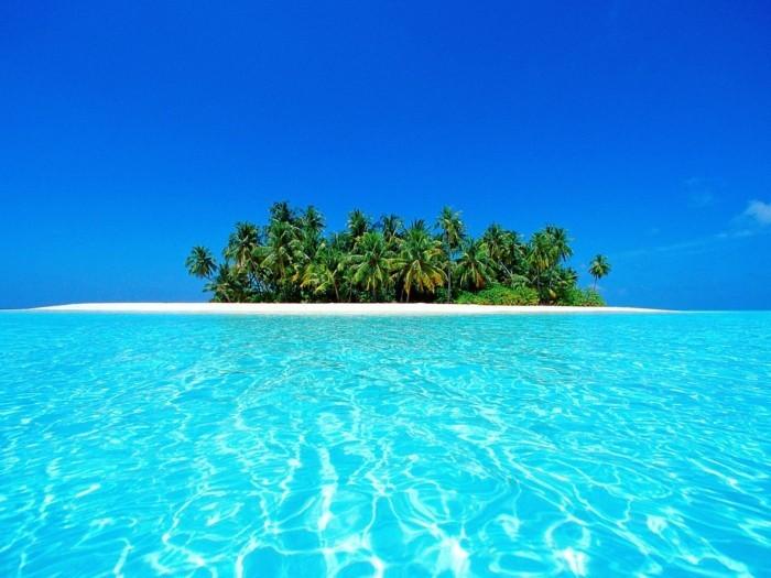 les-maldives-voyage-maldives-climat-iles-maldives-ile-palmes