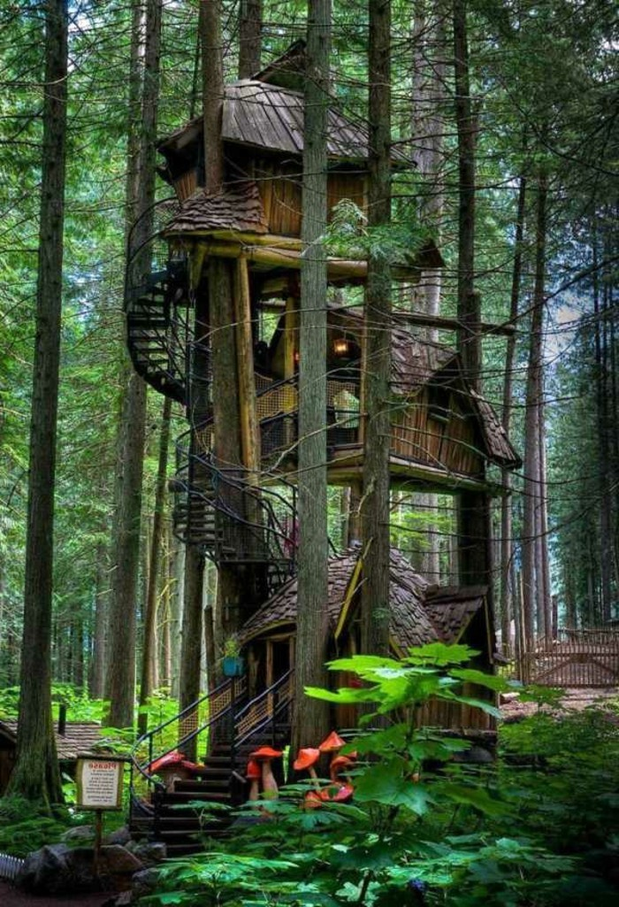 maison-architecte-les-plus-belles-maisons-du-monde-photos-cabin-foret