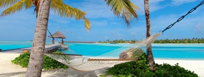 maldive-carte-que-faire-aux-maldives-nature-incroyable-beauté-hammac-palmes