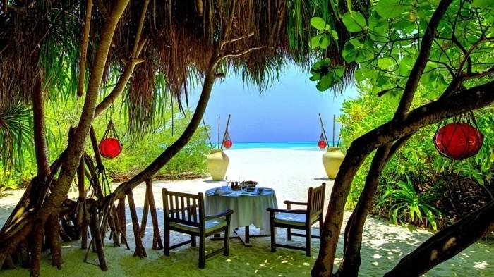 maldive-carte-que-faire-aux-maldives-nature-incroyable-beauté-restaurant