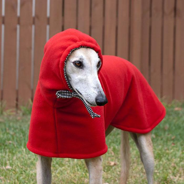 manteau-pour-chien-aves-capuchon