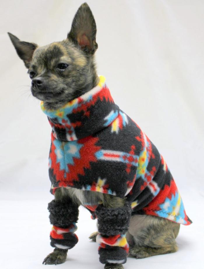 manteau-pour-chien-bariolé-style-pour-votre-petit-chien