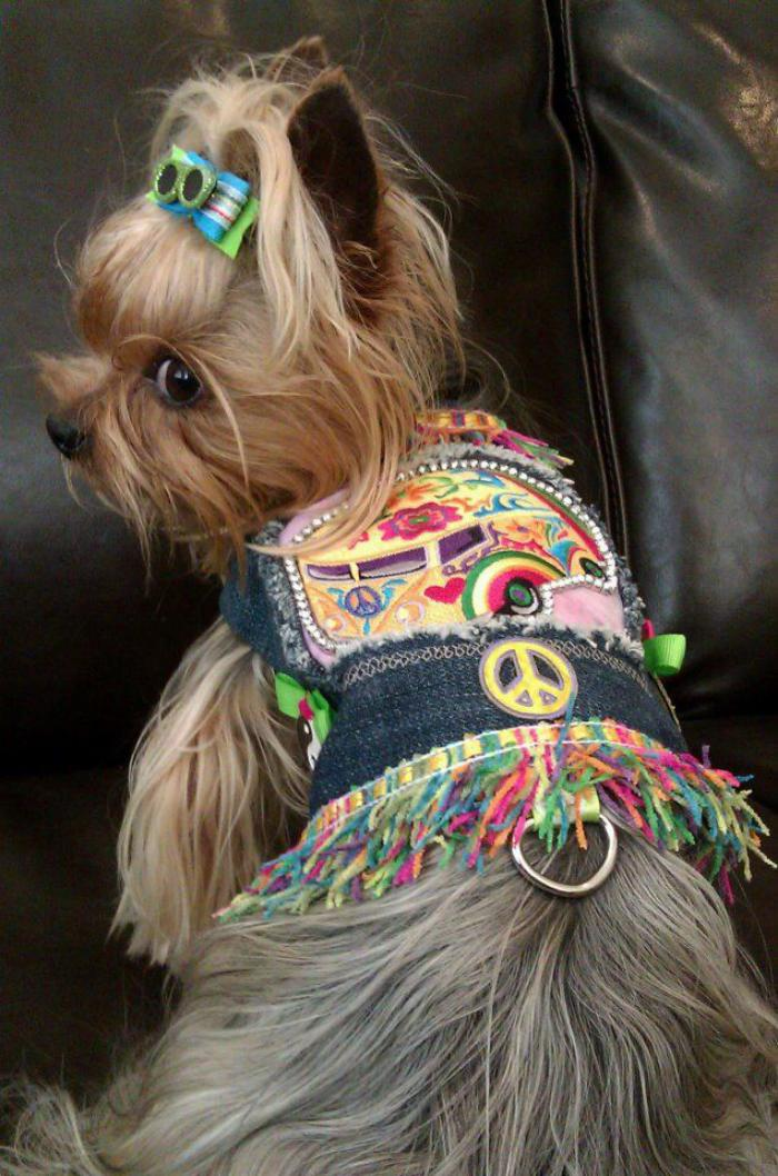 manteau-pour-chien-manteau-chien-style-hippie