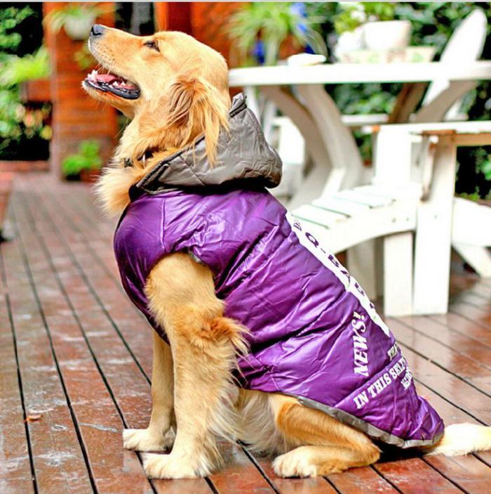 manteau-pour-chien-manteau-de-pluie-pour-chien