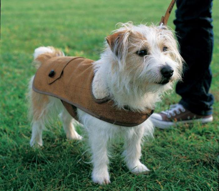 manteau-pour-chien-vetement-pour-chien-en-textile