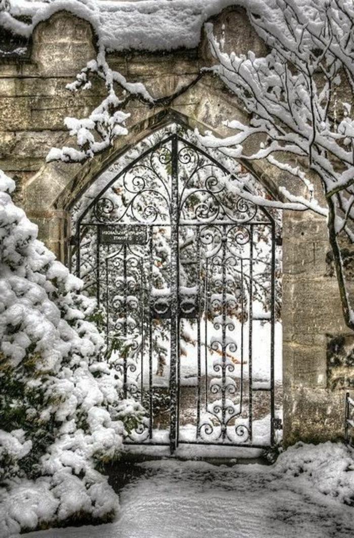 merveilleuse-photo-hiver-paysage-canada-photos-de-neige
