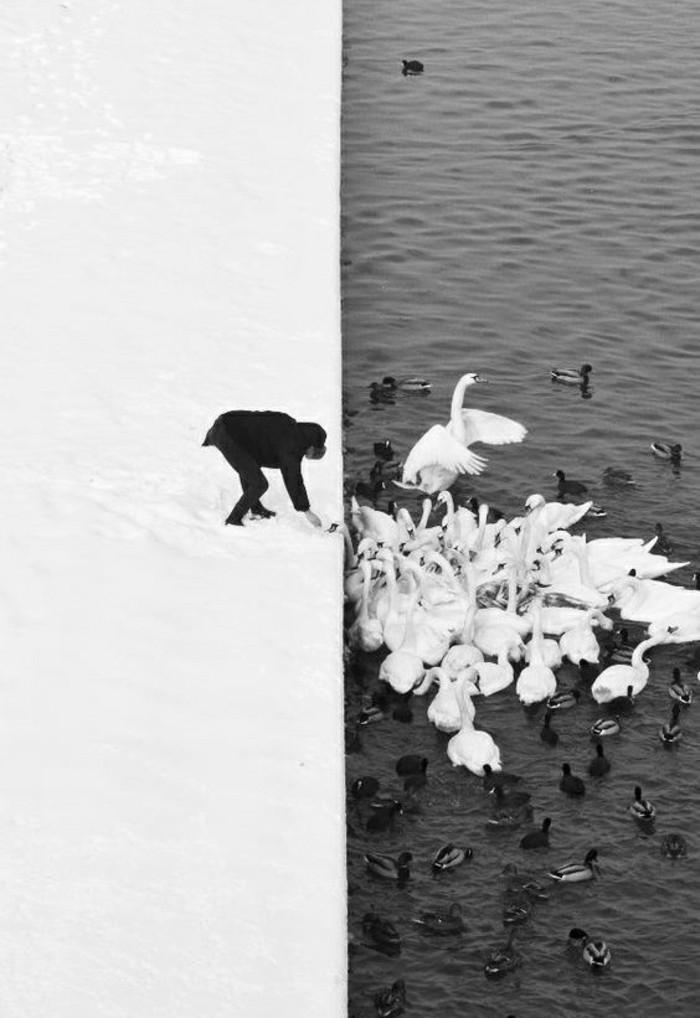merveilleuse-photo-noir-et-blanc-photographie-épreuve-belle-photo-