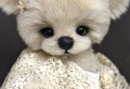 L' ourson en peluche – le jouet les plus aimé de tous les temps