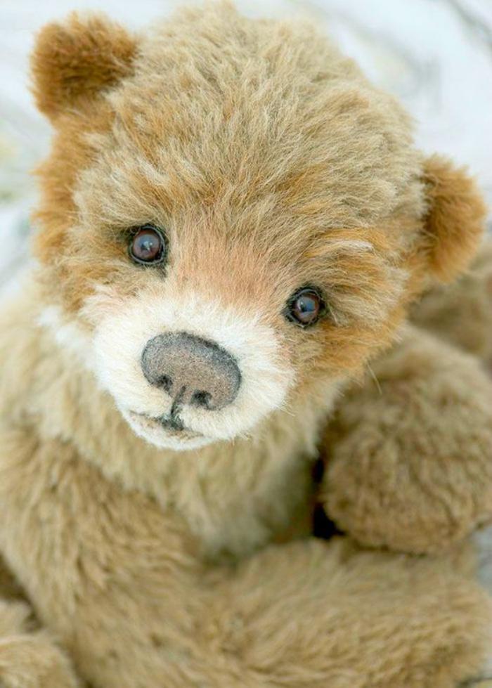 ourson-en-peluche-très-beau-peluche-ours