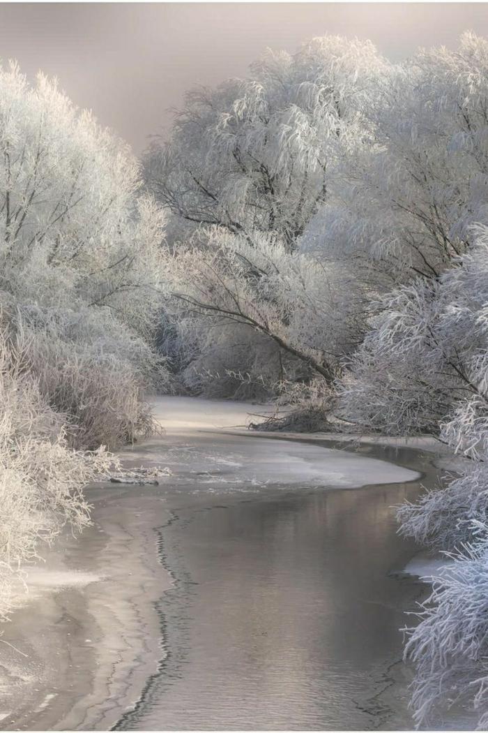 paysage-de-neige-paysage-d-hiver-image-de-paysage-blanc