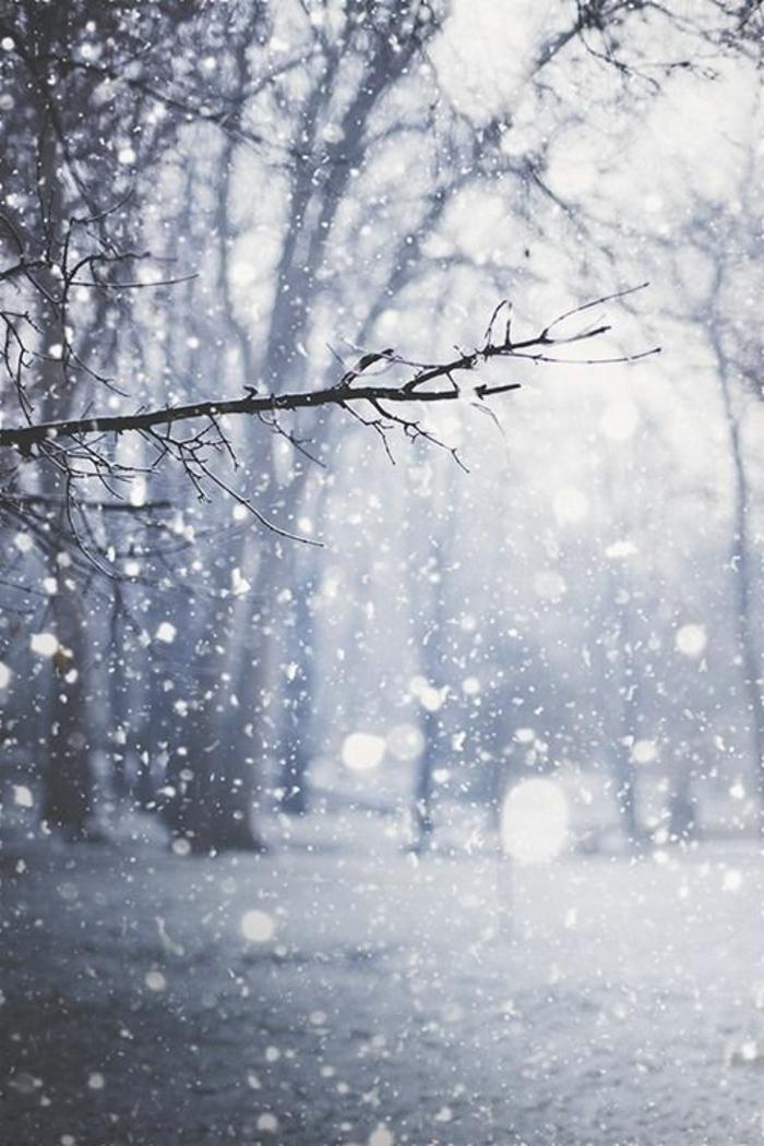 paysage-montagne-neige-fond-ecran-gratuit-hiver-beauté