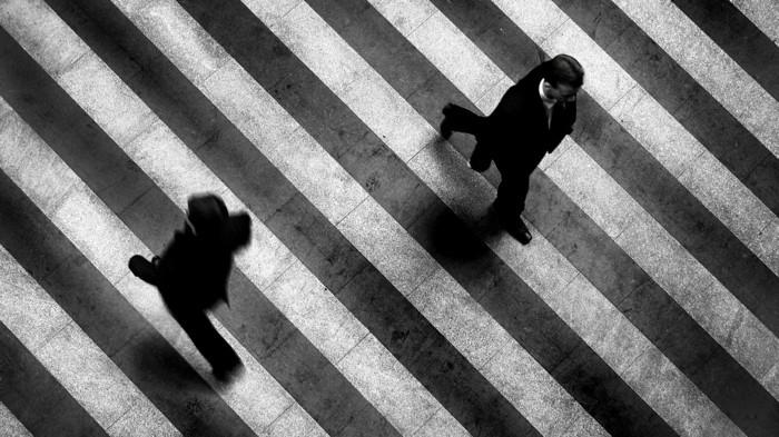 photographie-magnifique-noir-et-blanc-idée-inspiration-zebre