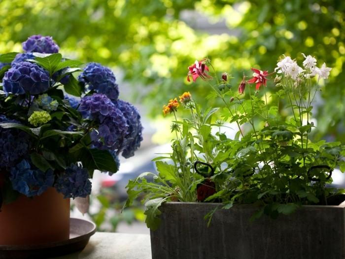 0-idee-deco-balcon-amenagement-balcon-balcon-fleuri-comment-fleurir-son-balcon