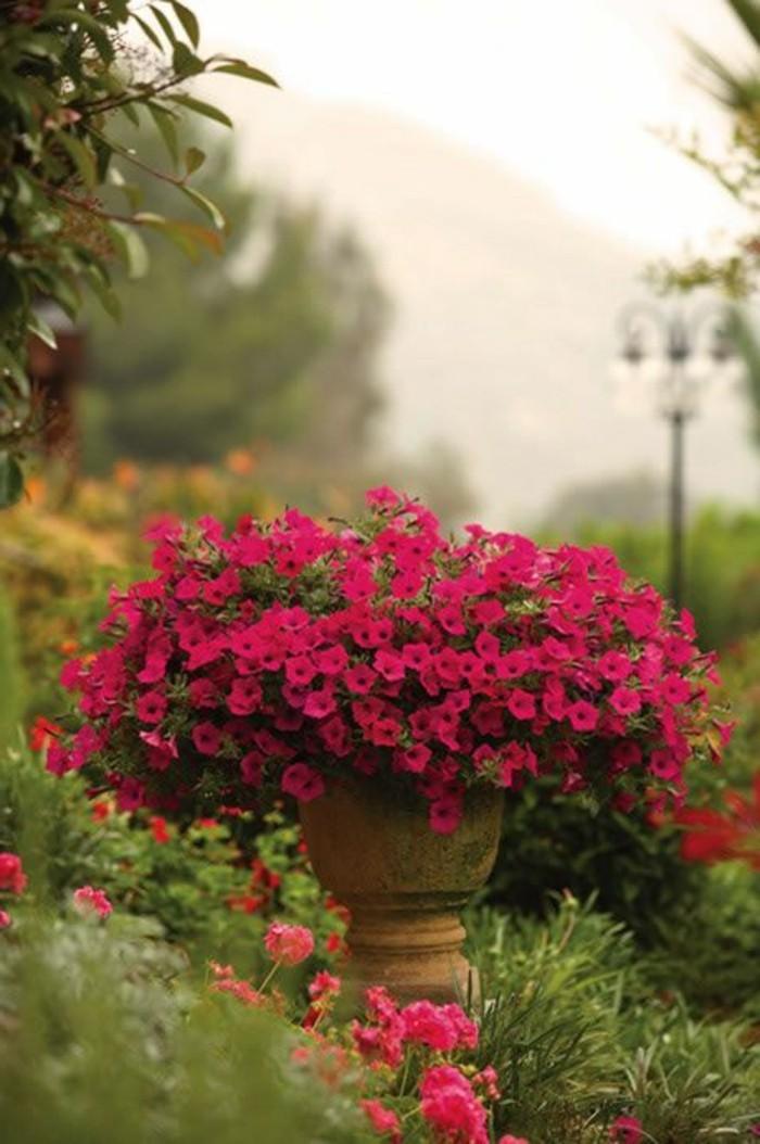 0-idee-deco-balcon-amenagement-balcon-de-couleur-violette-choisir-les-meilleurs-fleurs