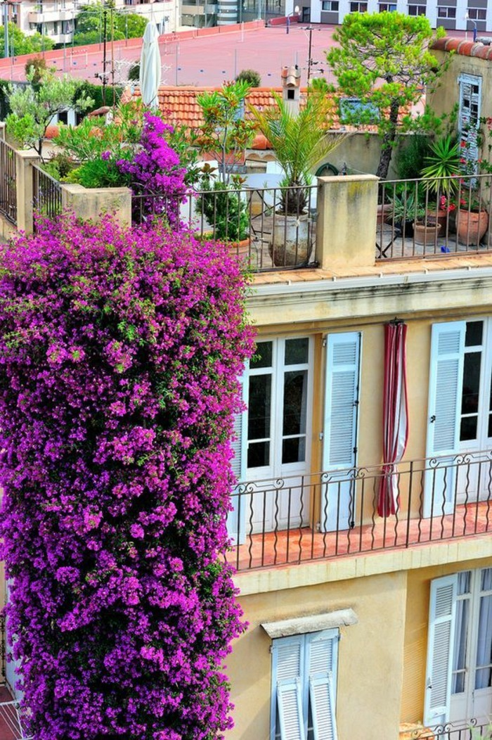 0-idee-deco-idee-deco-balcon-amenagement-balcon-fleurs-grimpantes-pour-le-balcon