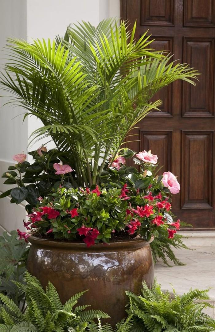 0-les-meilleurs-fleurs-pour-le-meilleur-balcon-fleuri--idee-deco-balcon