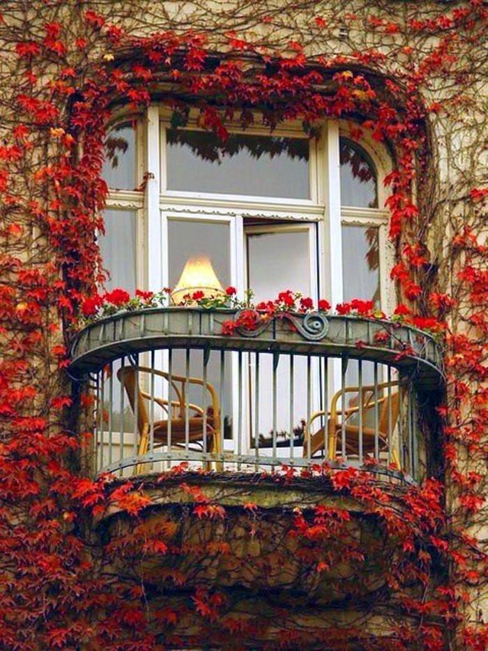 0-magnifique-balcon-avec-lierre-idee-deco-balcon-amenagement-balcon-avec-plantes-grimpantes