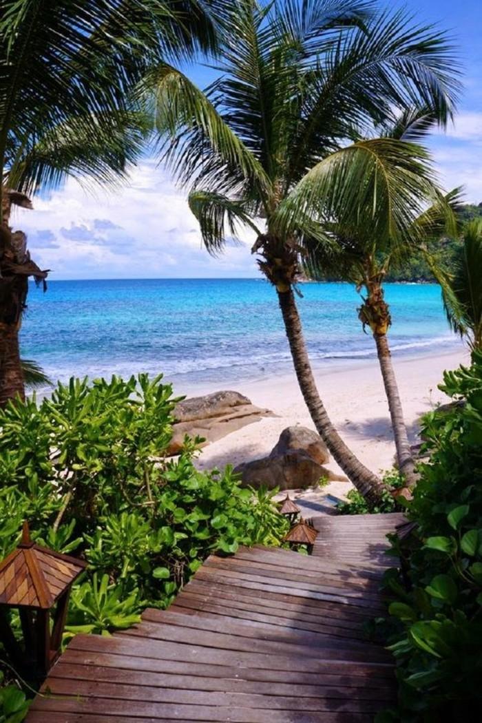 Une plage paradisiaque au bout du monde o passer vos for Les plus belles suites parentales