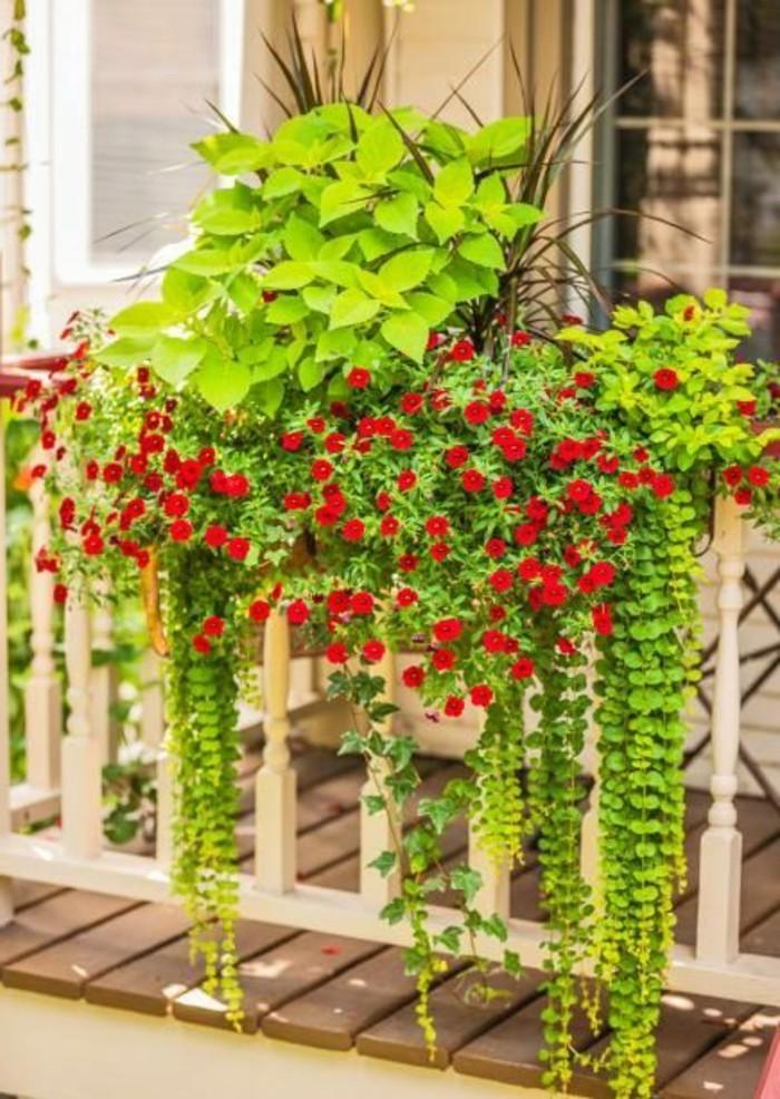Idee decoration balcon meilleures images d 39 inspiration for Plantes vertes exterieur balcon