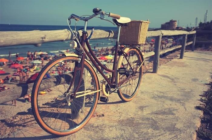 Photographie-art-vélo-ancient-anjou-bike-beau-image-plage